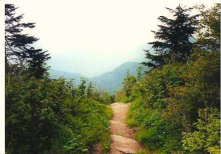 hiking trail smoky mountain overlook